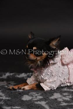 M&N Photography -DSC_2505