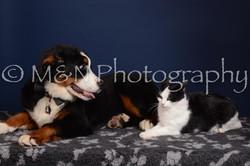 M&N Photography -DSC_4366