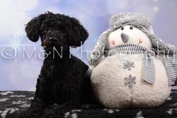 M&N Photography -DSC_6877