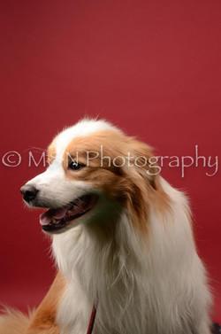 M&N Photography -DSC_6719
