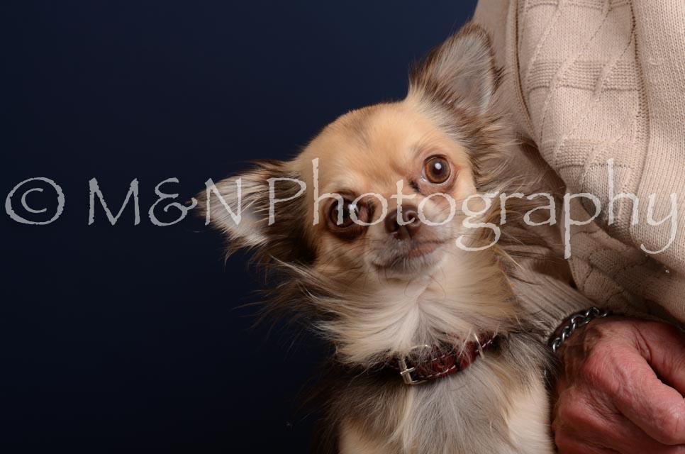 M&N Photography -DSC_4308