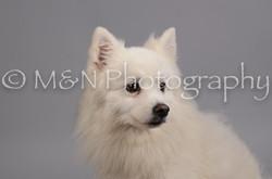 M&N Photography -DSC_2769