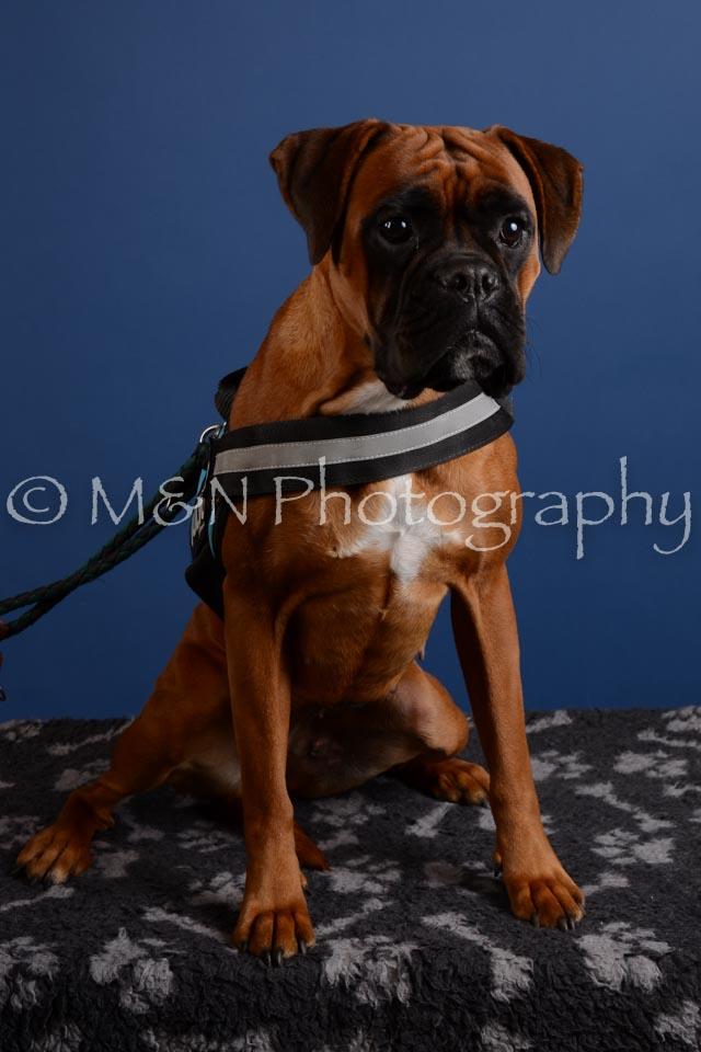 M&N Photography -DSC_5246