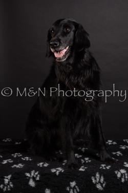 M&N Photography -DSC_5853