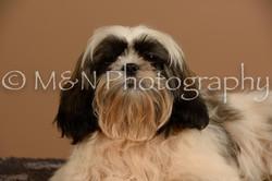 M&N Photography -_SNB0490