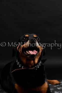 M&N Photography -DSC_2376