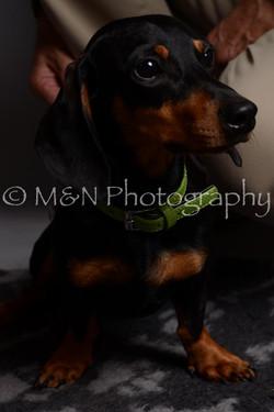 M&N Photography -DSC_2339