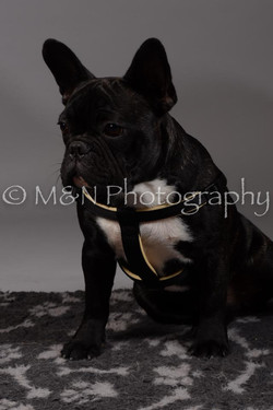 M&N Photography -DSC_1720