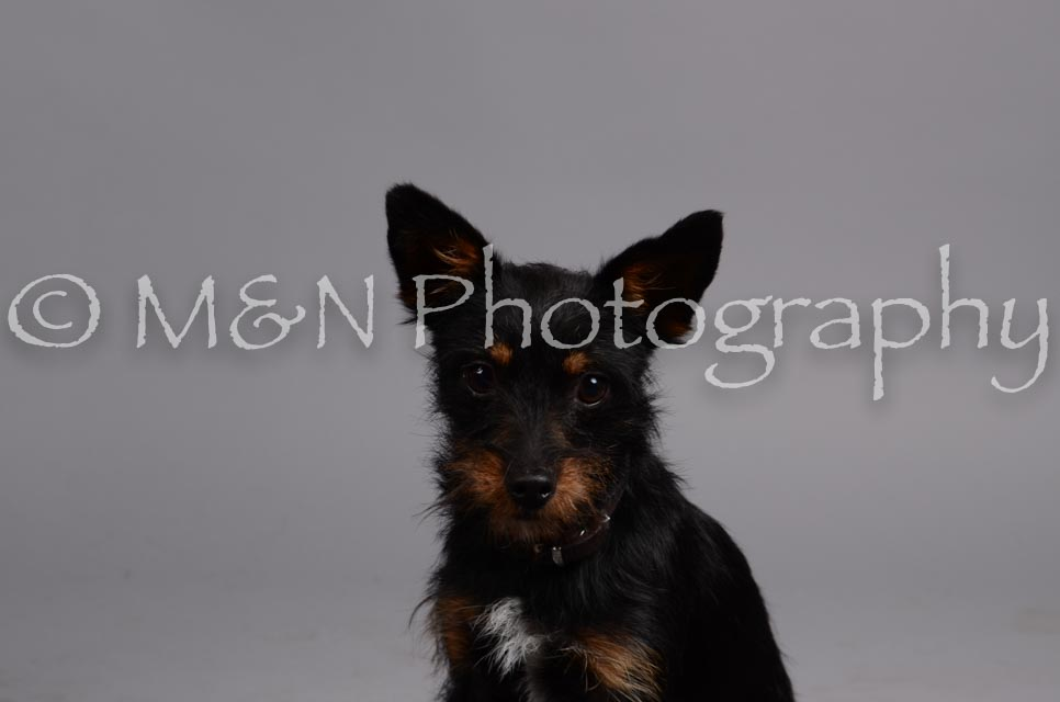 M&N Photography -DSC_2971
