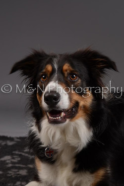 M&N Photography -DSC_2054