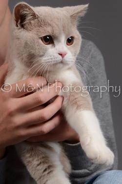 M&N Photography -DSC_1607
