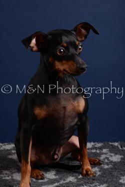 M&N Photography -DSC_3824