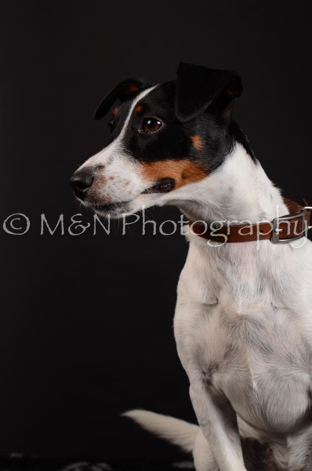M&N Photography -DSC_5506