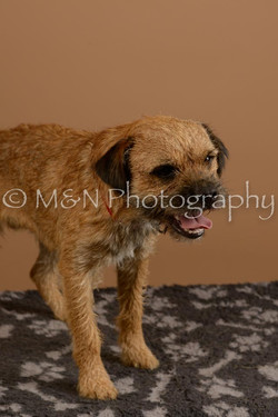 M&N Photography -_SNB0518
