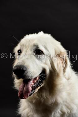 M&N Photography -DSC_2422