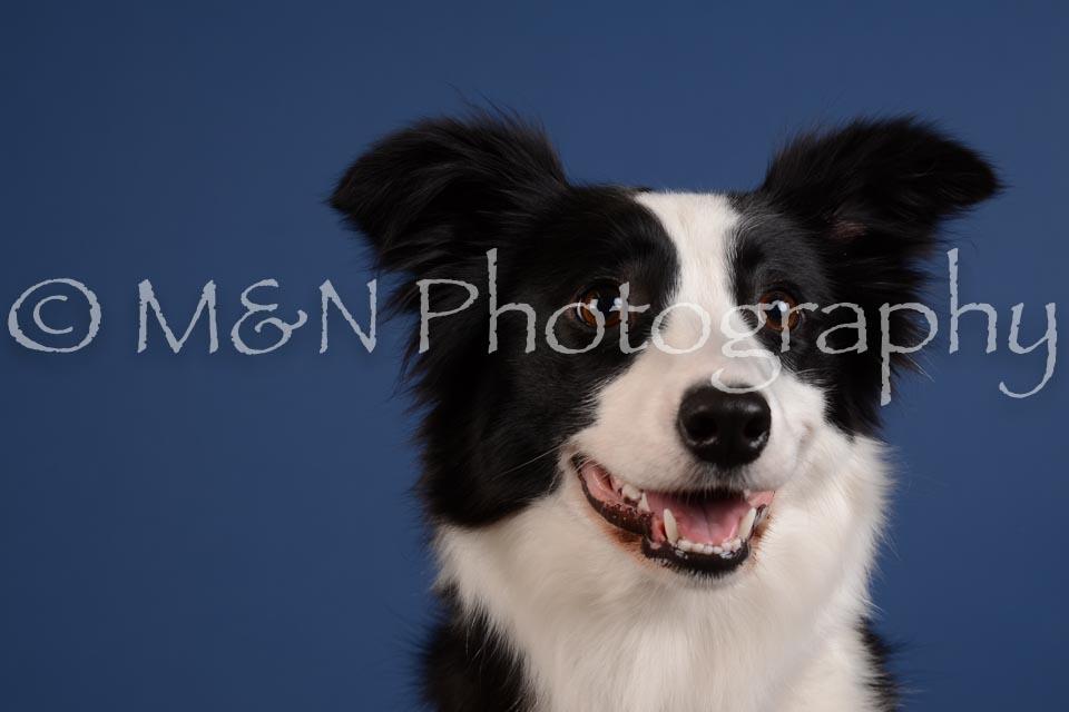 M&N Photography -DSC_5315