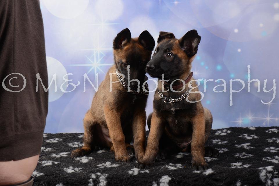 M&N Photography -DSC_7002