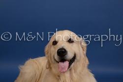 M&N Photography -DSC_5283