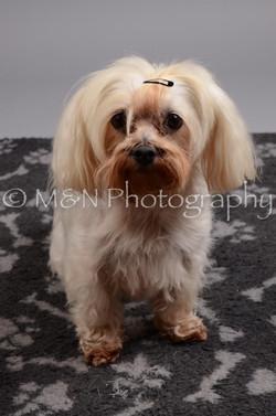 M&N Photography -DSC_2758