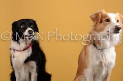 M&N Photography -DSC_4490