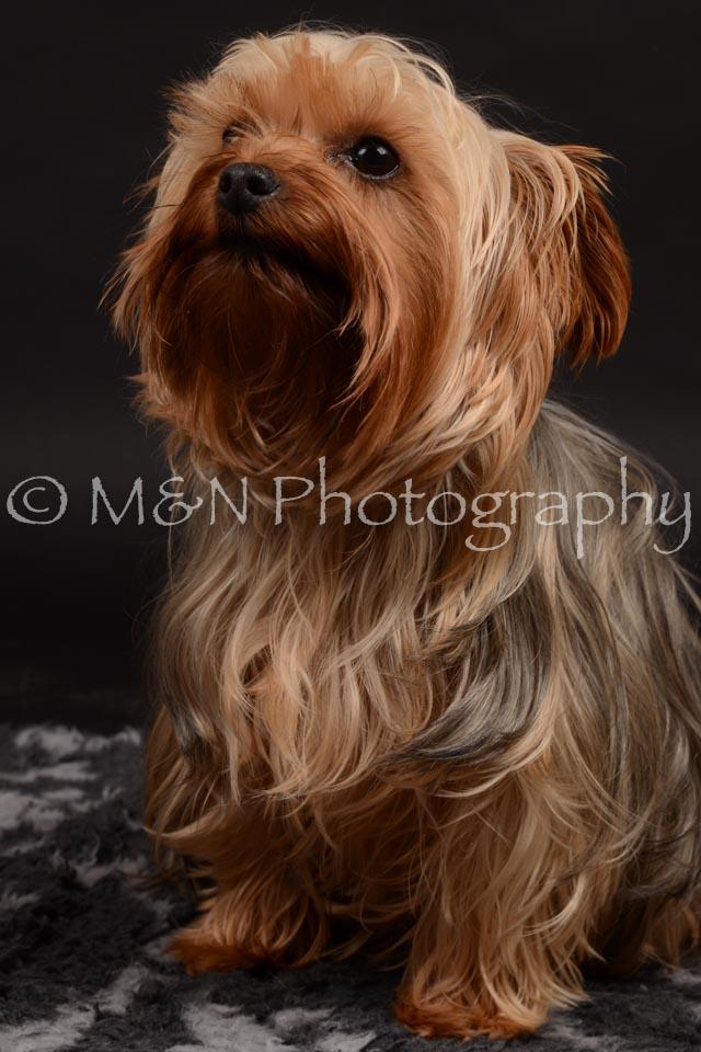 M&N Photography -DSC_9699