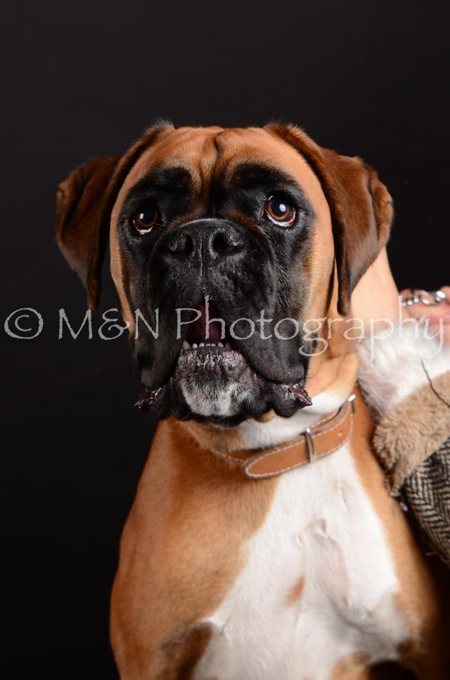 M&N Photography -DSC_5918