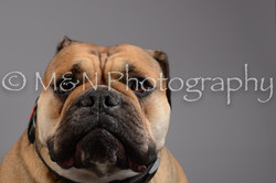M&N Photography -DSC_1748