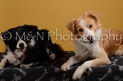 M&N Photography -DSC_4493