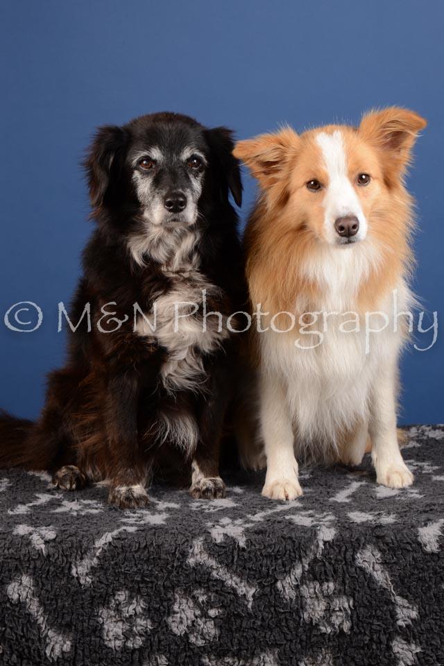 M&N Photography -DSC_4910