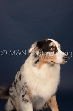 M&N Photography -DSC_4006