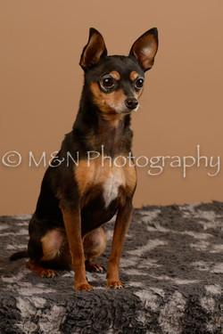 M&N Photography -_SNB0552