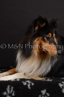 M&N Photography -DSC_5615