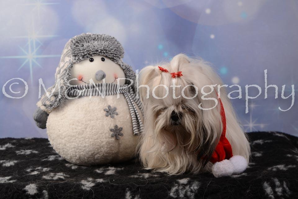 M&N Photography -DSC_7158