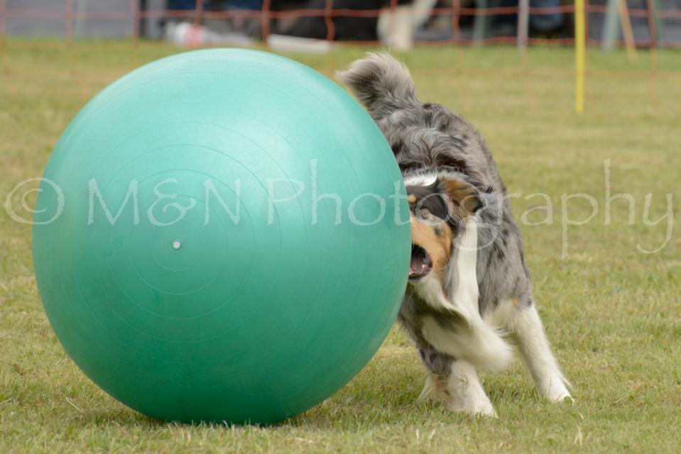 M&N Photography -4591