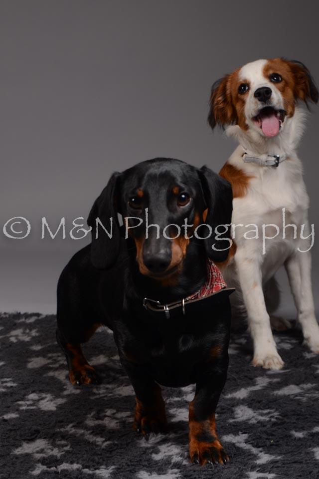 M&N Photography -DSC_1514