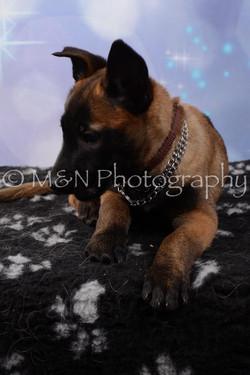 M&N Photography -DSC_6996
