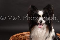 M&N Photography -DSC_9826