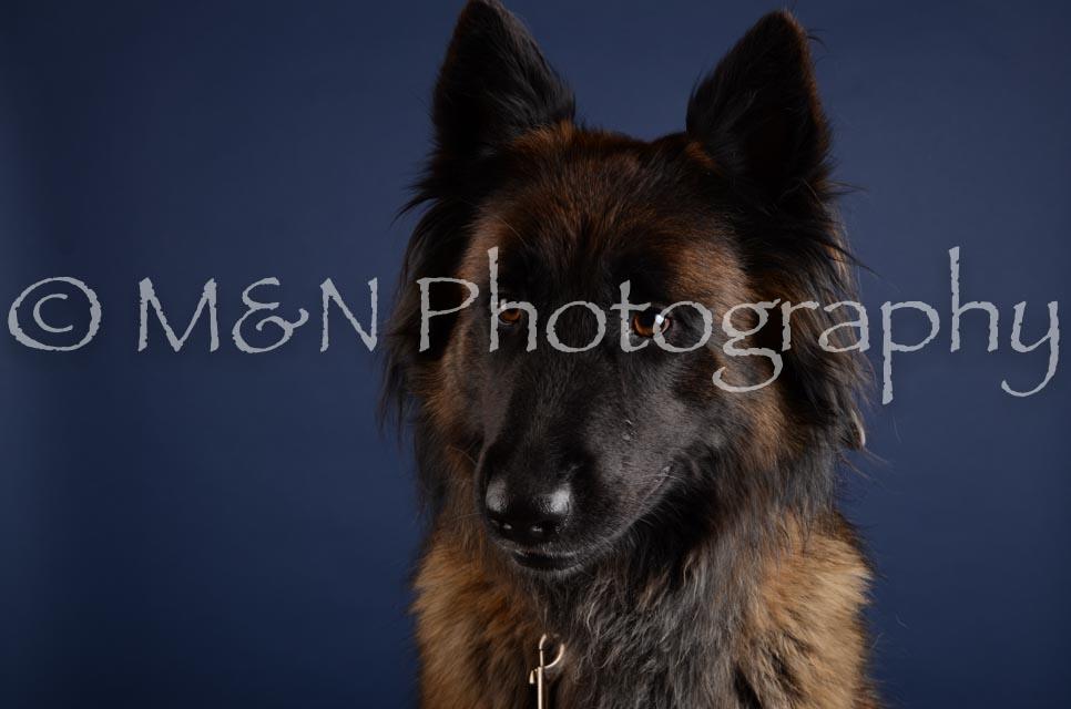 M&N Photography -DSC_4383