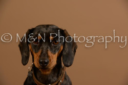 M&N Photography -_SNB0539