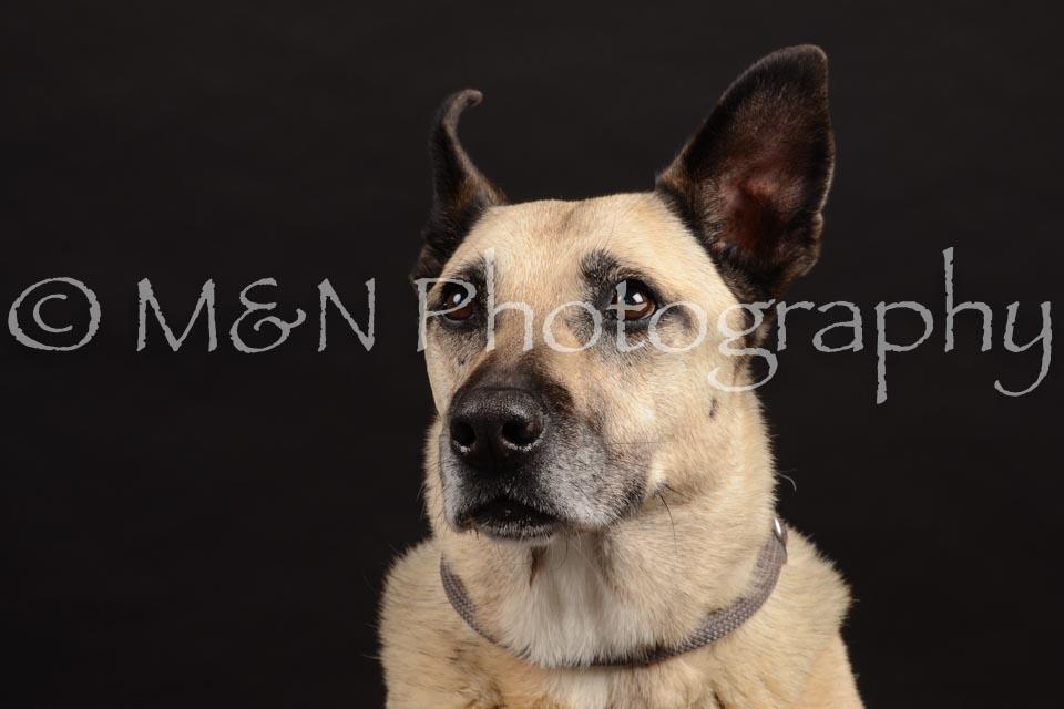 M&N Photography -DSC_9739