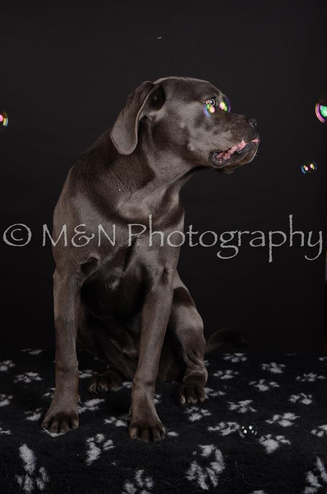 M&N Photography -DSC_5591