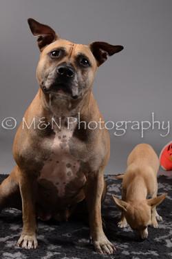 M&N Photography -DSC_1860