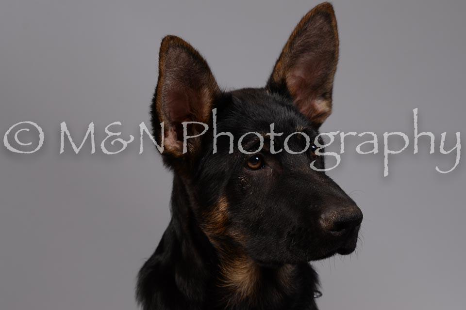M&N Photography -DSC_2393