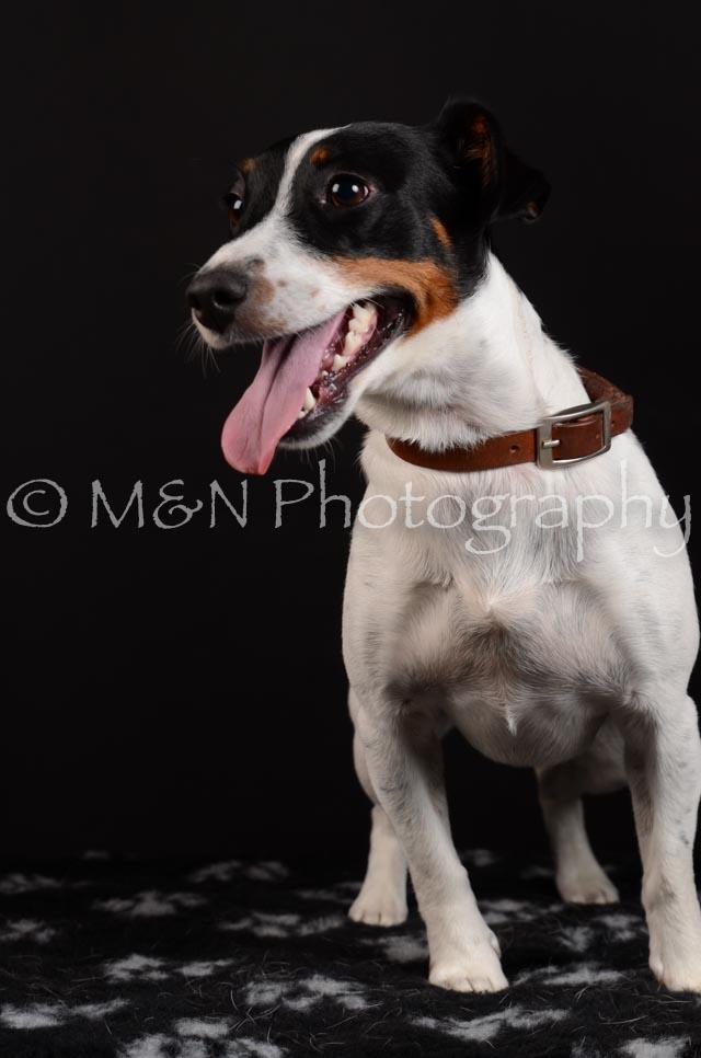 M&N Photography -DSC_5502