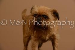M&N Photography -_SNB0908