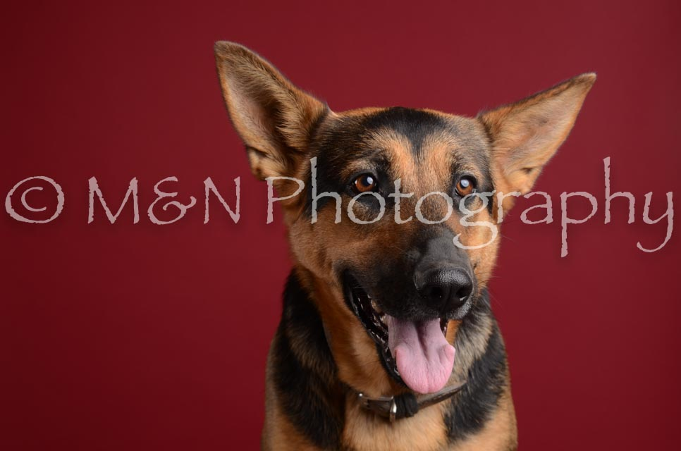 M&N Photography -DSC_3763