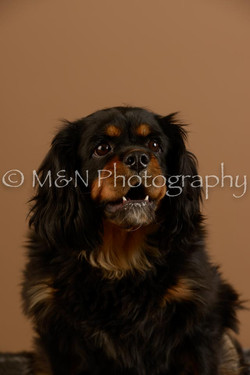M&N Photography -_SNB0673