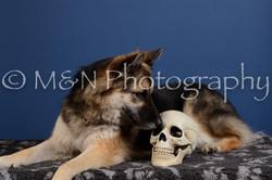 M&N Photography -DSC_5082