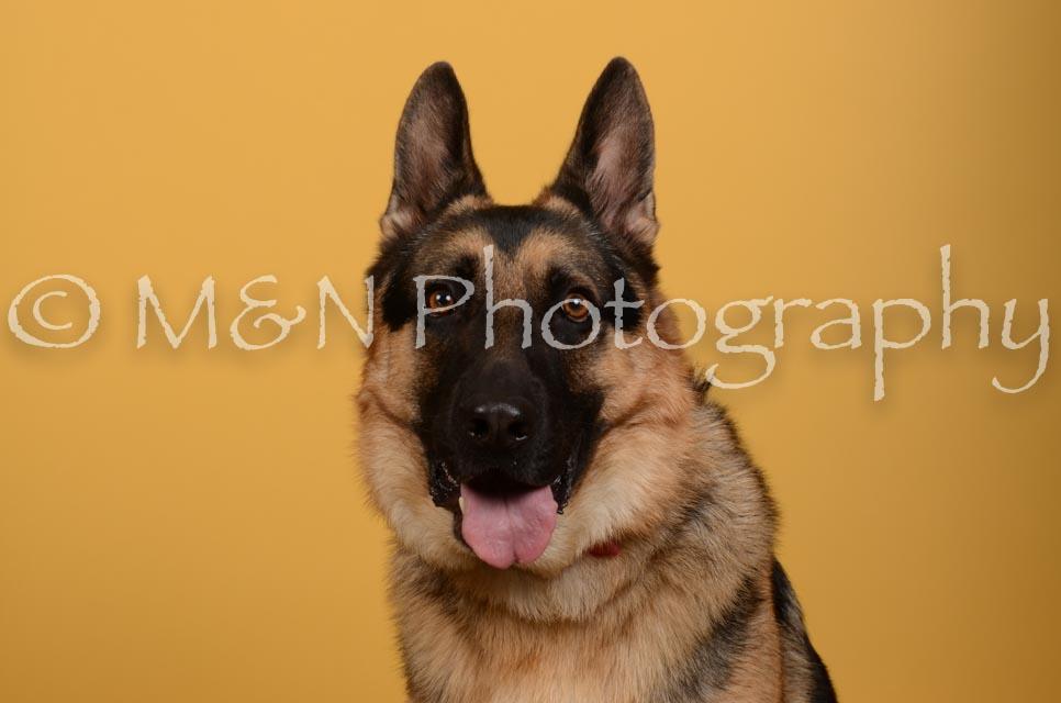 M&N Photography -DSC_4775