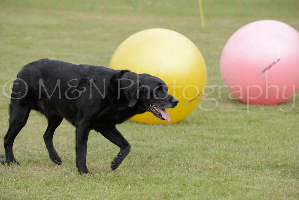 M&N Photography -4634